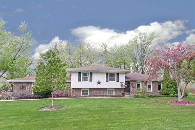 Naperville Single Family Home For Sale: 11s634 Webster Lane