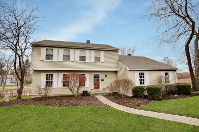 Libertyville Single Family Home New: 610 Valley Park Drive