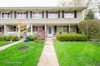 Evanston Condo/Townhouse New: 3211 Central Street