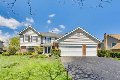 Vernon Hills Single Family Home For Sale: 292 Noble Circle