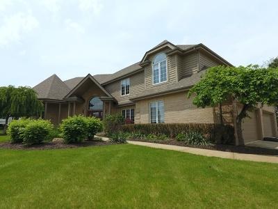 Mokena Single Family Home New: 21222 Prestancia Drive