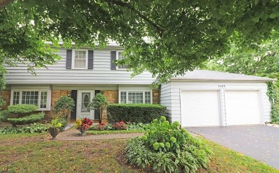 Buffalo Grove Single Family Home For Sale: 1143 Bernard Drive