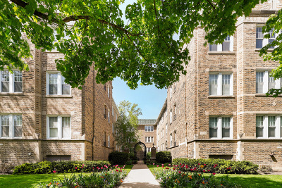 Evanston, Skokie Condo/Townhouse New: 717 Reba Place #3N
