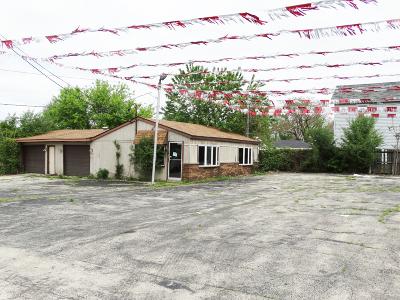 Homer Glen, Lockport Commercial For Sale: 1725 South State Street