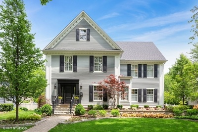 Hinsdale Single Family Home For Sale: 413 South Lincoln Street