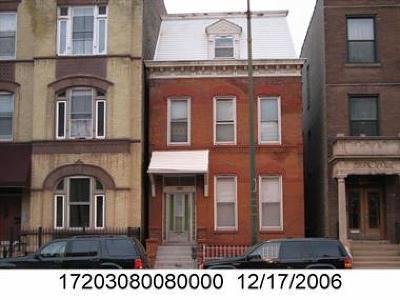 Chicago Multi Family Home New: 1817 South Ashland Avenue