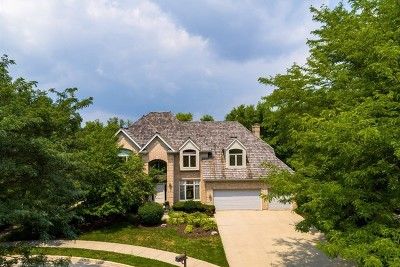 Vernon Hills Single Family Home For Sale: 872 Creek Bend Drive