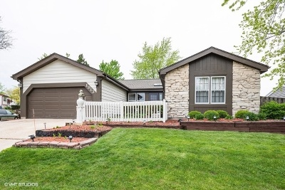 Glendale Heights Single Family Home For Sale: 1913 Scarboro Drive