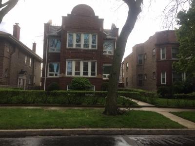 Chicago Multi Family Home New: 7322 South Crandon Avenue
