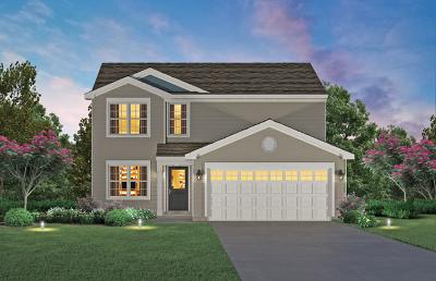 Romeoville Single Family Home For Sale: 412 Stonebrook Drive
