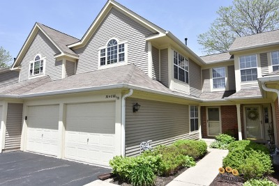 Warrenville Condo/Townhouse New: 30w066 Willow Lane