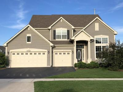 Elgin IL Single Family Home New: $359,000