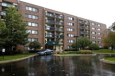 Hoffman Estates Condo/Townhouse For Sale: 1800 Huntington Boulevard #AE604