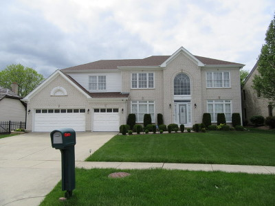 Schaumburg Single Family Home For Sale: 804 Seers Drive