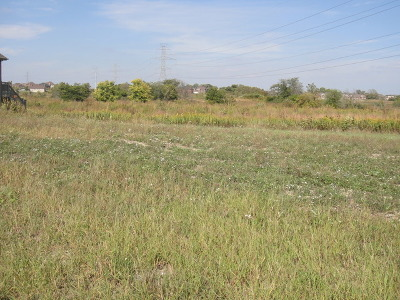Residential Lots & Land For Sale: 20661 Grand Haven Drive