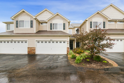 Round Lake Condo/Townhouse New: 503 South Jade Lane