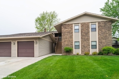 Du Page County Condo/Townhouse New: 5850 Fresno Court #C