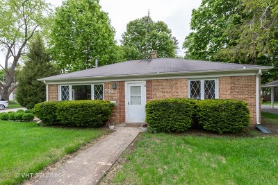 Libertyville Single Family Home For Sale: 732 East Rockland Road