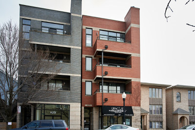 Chicago Condo/Townhouse New: 927 West 35th Street #2