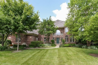 South Elgin Single Family Home For Sale: 802 Waters Edge Drive