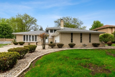 Orland Park Single Family Home New: 14201 Clearview Drive