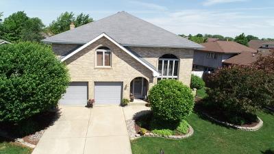 Tinley Park Single Family Home New: 9306 178th Street