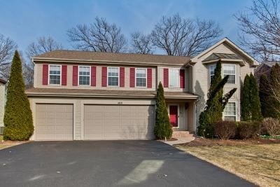 Libertyville Single Family Home New: 1821 South Falcon Drive