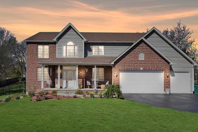 Kane County Single Family Home New: 4n604 Snowbird Court