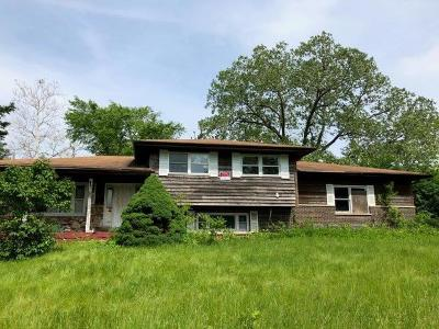Burr Ridge Single Family Home New: 10s659 South Jackson Street