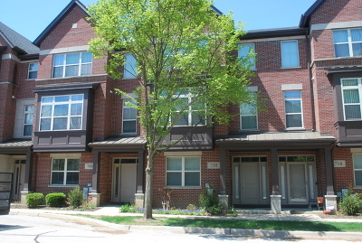 Vernon Hills Condo/Townhouse New: 706 Summit Lane