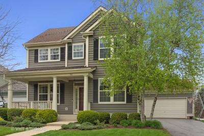 Vernon Hills Single Family Home New: 62 Depot Street