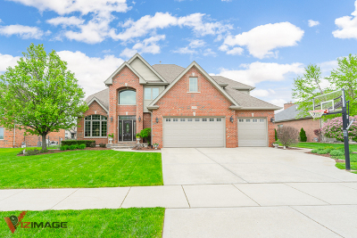 Cook County Single Family Home New: 12849 Klappa Drive