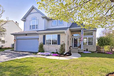 Lake Villa Single Family Home New: 810 Park Avenue