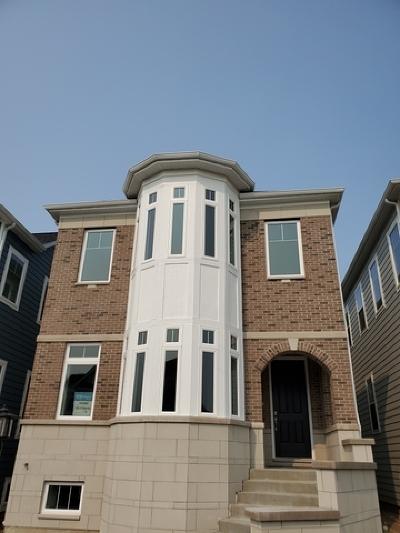 Cook County Single Family Home New: 6020 North Kildare Avenue