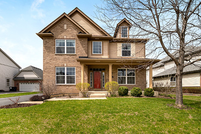 Vernon Hills Single Family Home For Sale: 1678 North Woods Way