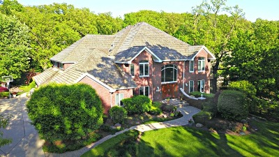 Orland Park Single Family Home For Sale: 51 Silo Ridge Road