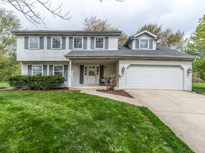 Naperville Single Family Home New: 803 Riva Ridge Court