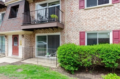 Palatine Condo/Townhouse New: 884 South Plum Grove Road #111