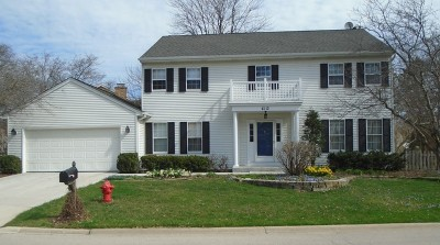 Lisle Single Family Home For Sale: 6113 Heritage Lane