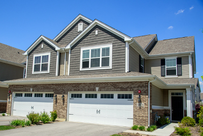 Lockport Condo/Townhouse New: 16128 West Switch Grass Road West
