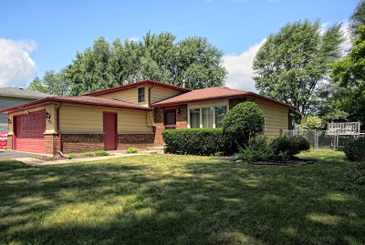 South Elgin Single Family Home Contingent: 870 James Drive