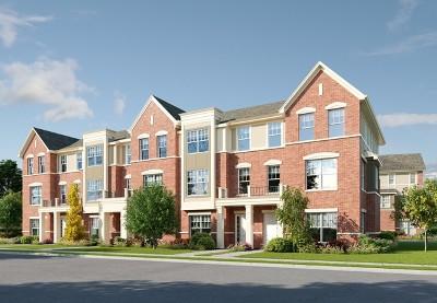 Vernon Hills Condo/Townhouse New: 1204 Byrne Boulevard