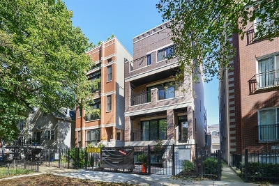Chicago Condo/Townhouse New: 2725 North Wayne Avenue #2