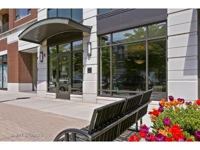 Burr Ridge Condo/Townhouse New: 850 Village Center Drive #217