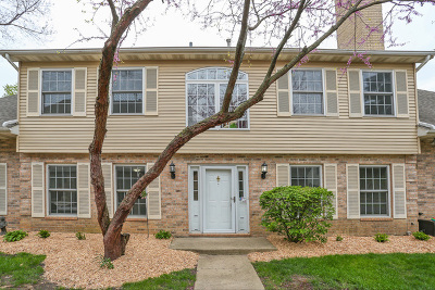Streamwood Condo/Townhouse New: 1517 Laurel Oaks Drive