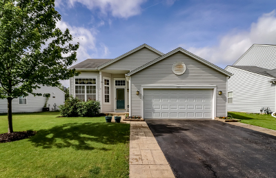 Romeoville Single Family Home Price Change: 242 East Daisy Circle