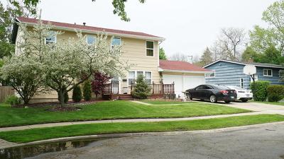 Carpentersville Single Family Home New: 11 Livingston Avenue
