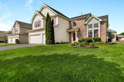 Algonquin Single Family Home For Sale: 550 Golden Valley Lane