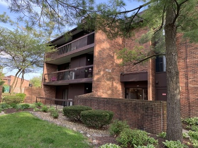 Oak Forest Condo/Townhouse New: 14511 Central Court #G3