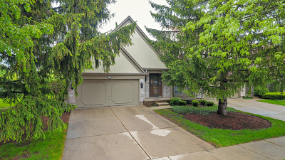 Buffalo Grove Condo/Townhouse New: 560 South Cherbourg Drive